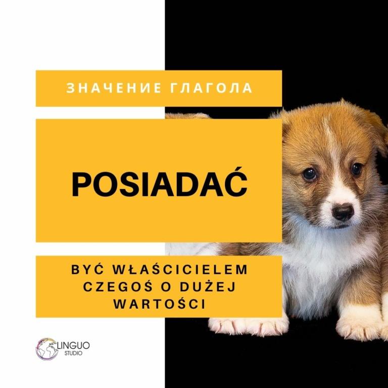 Польская грамматика #2