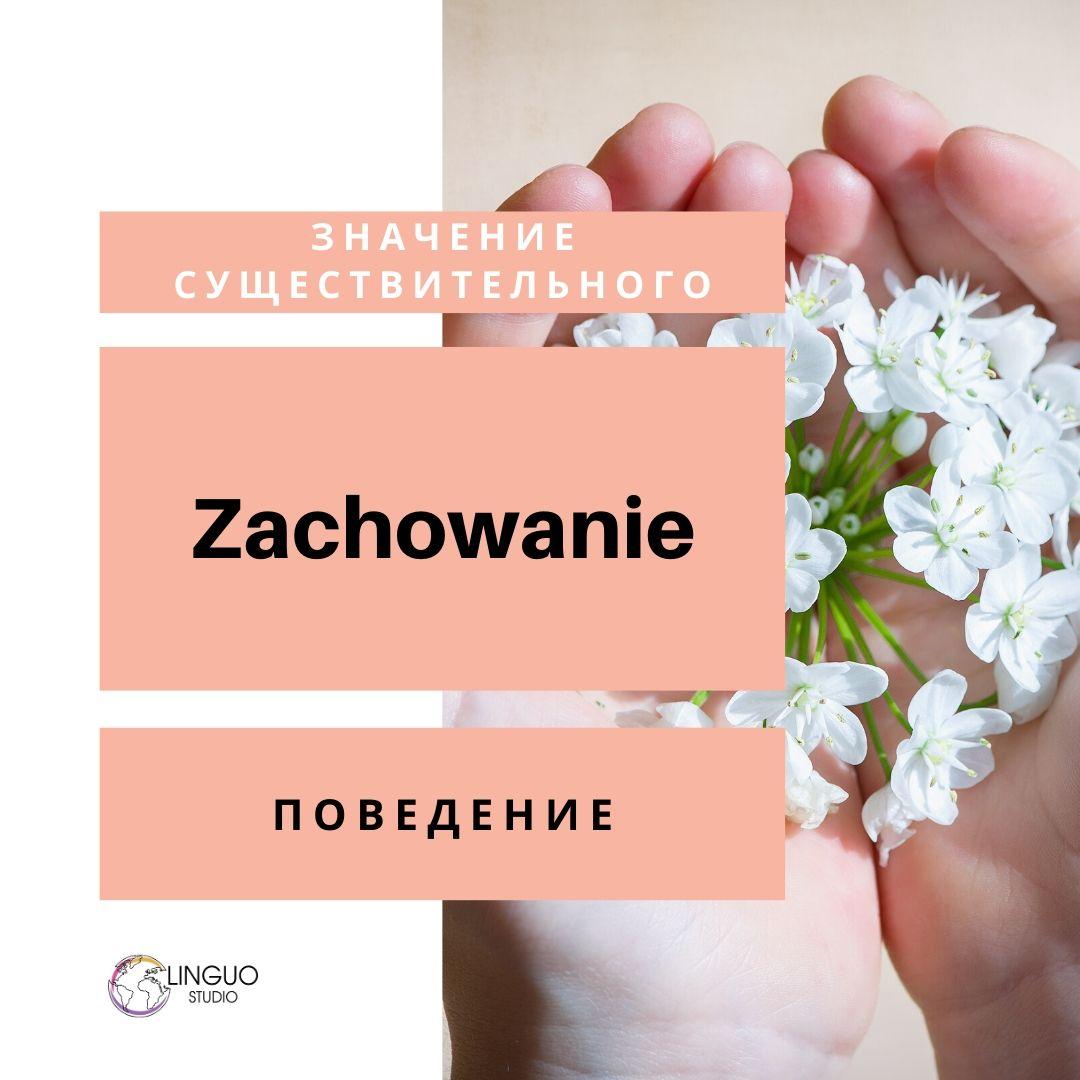 Польская лексика #9