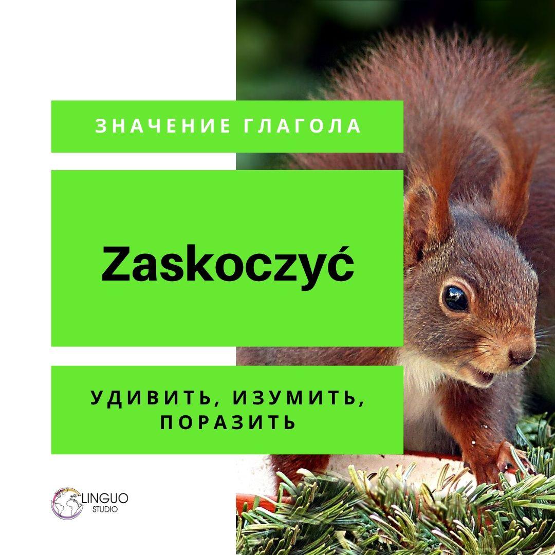 Польская грамматика #12