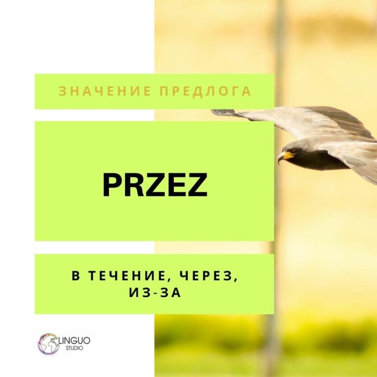 Польская лексика #10