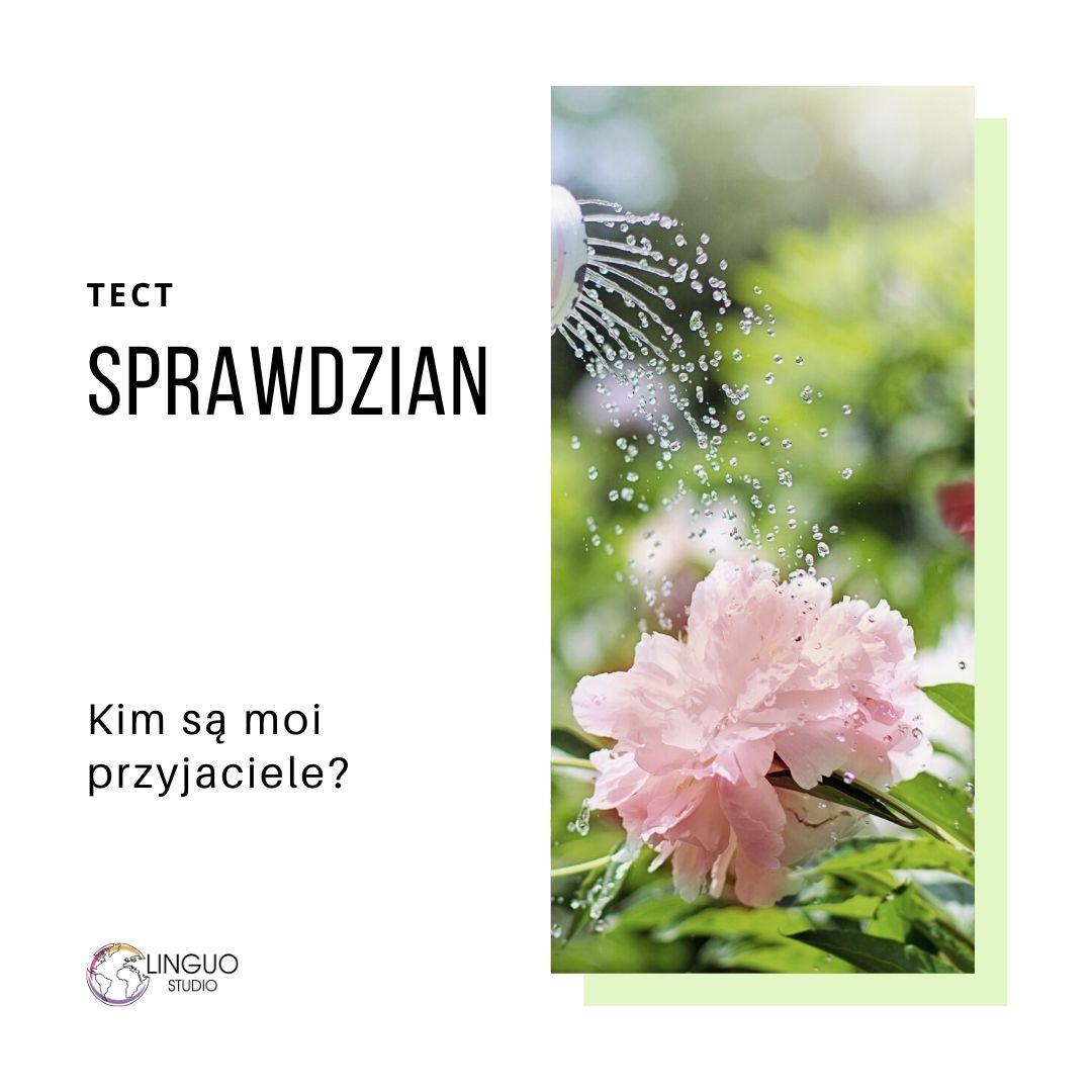 Польская грамматика #25