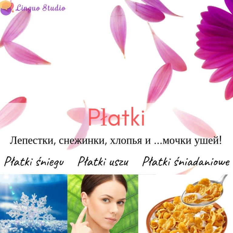Польская лексика #3