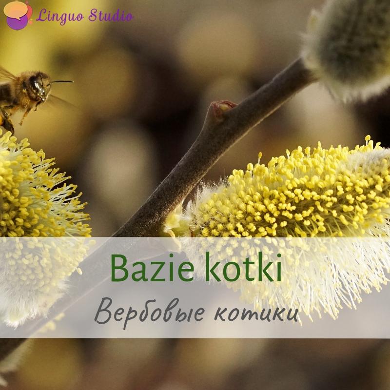 Польская лексика #24