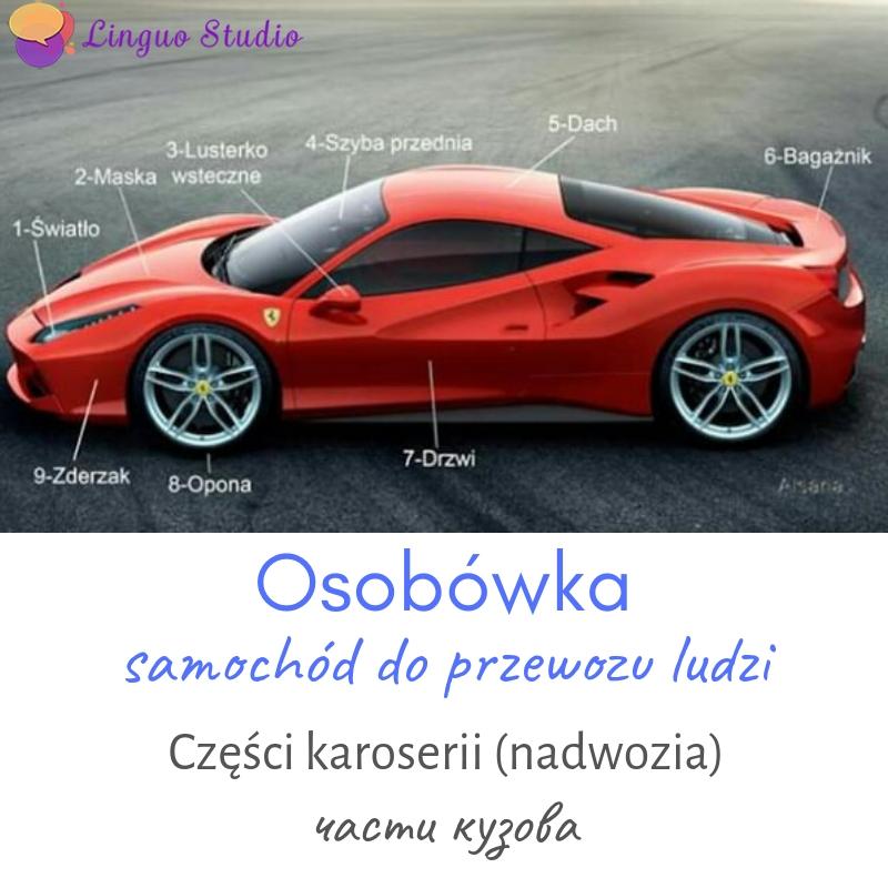 Польская лексика #23