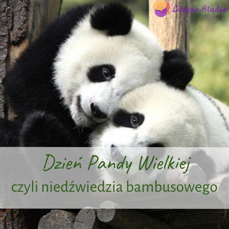 Польская лексика #22