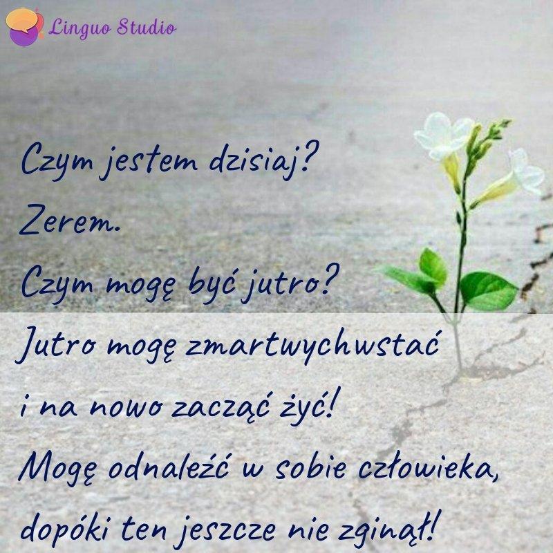 Польская лексика #36